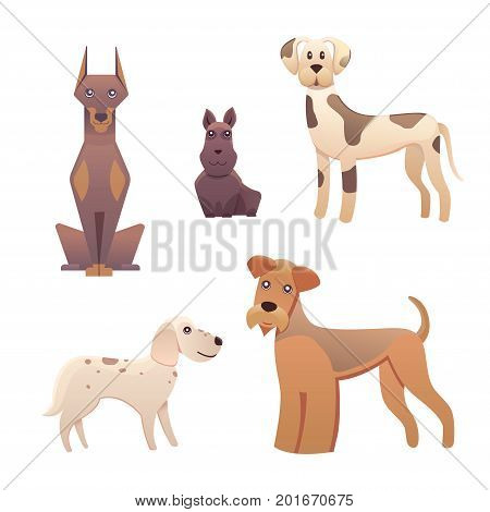 Collection cute different type of dogs small and big. Vector breed dogs isolated set.