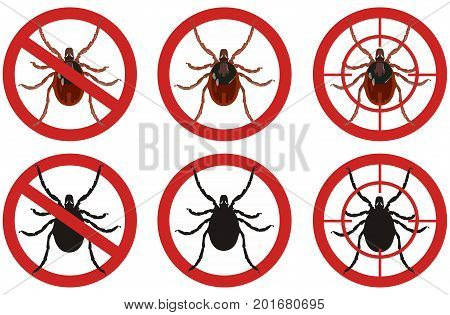 Warning stop sign with colored detailed picture of mite and its black silhouette inside a red sign on a white background. Fighting insect pests.