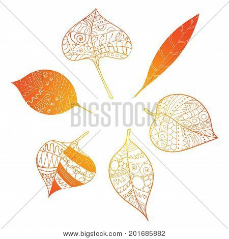 Autumn leaves. Stylized orange leaves lying in a circle. A round logo with leaves.