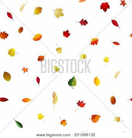 Autumn falling seamless bright background . Vector season pattern . Red and yellow leaves .