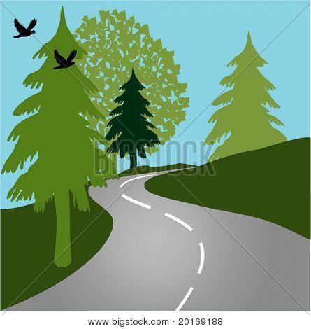 Road through nature