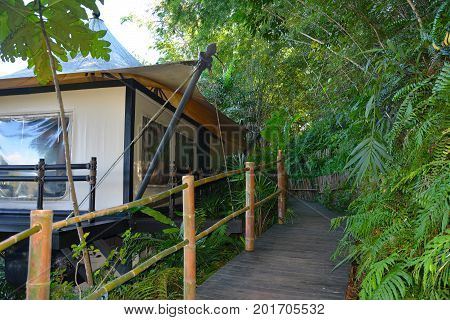 CHIANG RAI THAILAND - JANUARY 8 2017: Four Seasons Tented Camp Golden Triangle. A luxury tented camp in Thailand where you can interact with elephants and their trainers.
