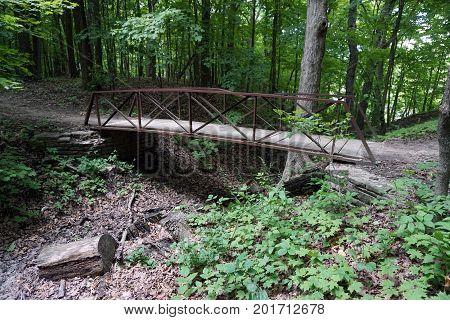 A footbridge allows hikers to cross over a gully in the Hammel Woods Forest Preserve in Shorewood, Illinois, during July.