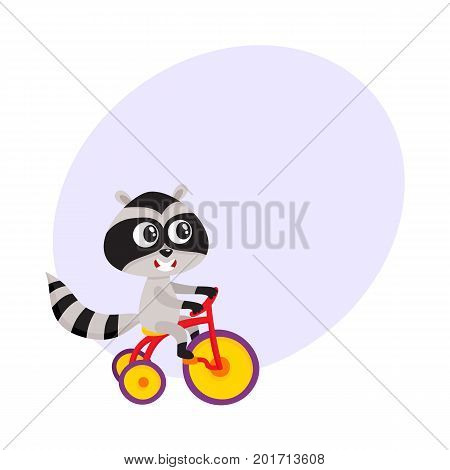 Cute little raccoon character riding bicycle, tricycle, cycling, cartoon vector illustration with space for text. Little baby raccoon animal character riding bike, bicycle, tricycle