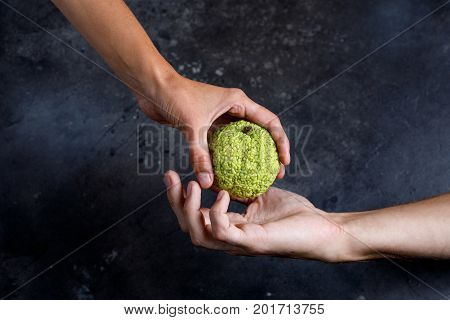 Woman's Hand Gives The Apple To The Man's Hand. Hands Holding A Adam's Apple.