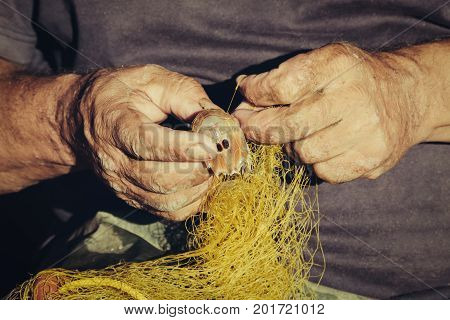 Fishers hands take fish out of a net