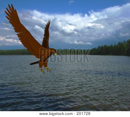 rendered eagle about to catch fish at lake poster