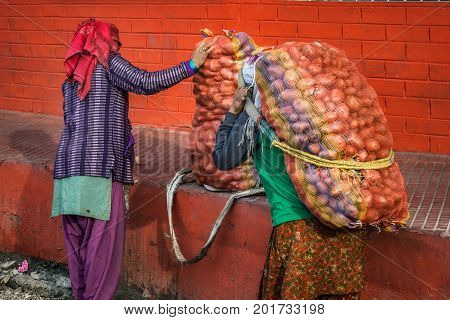 Two woman carrying potato bags at Darjeeling, India.