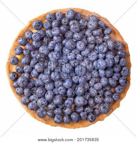 Blueberry tart isolated on white background, top view