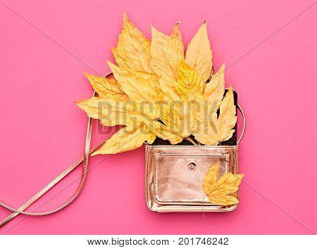 Autumn Minimal Art Design. Fall Fashion. Trendy Stylish Glamour fashion Handbag Clutch. Yellow Fall Leaves on Pink Background.Vintage