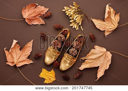 Fall Fashion Design. Fall Leaves Background. Trendy fashion Stylish Glamour Shoes. Autumn Vintage