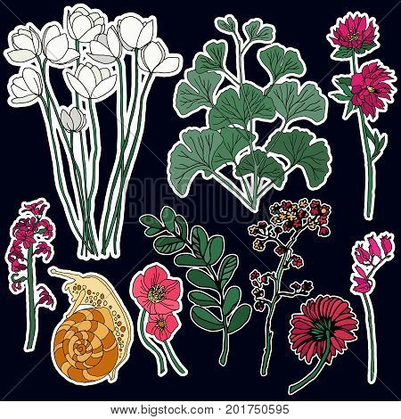 Set of flowers and snail patches elements. Set of stickers, pins, patches and handwritten notes collection in cartoon 80s-90s comic style.Vector stikers kit