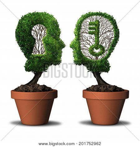 Partner key solution and team opportunity business concept as two trees shaped as a human head with a key and keyhole shapes as a collaboration success metaphor with 3D illustration elements.