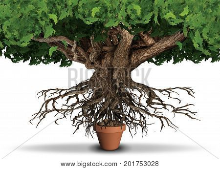 Limited resources business and economy concept as huge tree and roots trying to get nutrients from a small plant pot as a scarcity metaphor with 3D illustration elements.