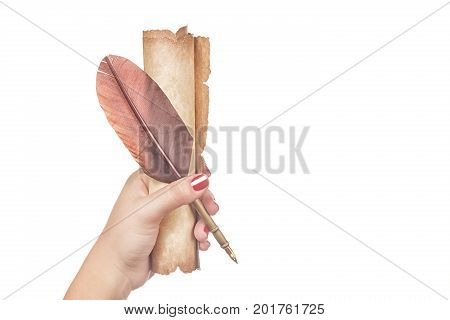 Literature concept. Female woman hand holds a feather quill pen with old vintage scroll isolated on white background