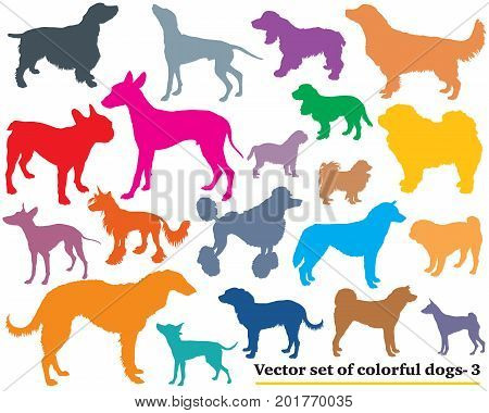 Vector set of colorful isolated different breeds dogs silhouettes on white background. Part 3