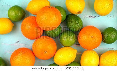 Mixed Citrus Fruit On Aqua Blue Table