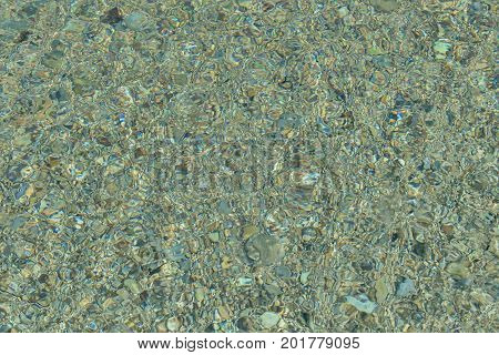 Green background of the seabed. Water surface