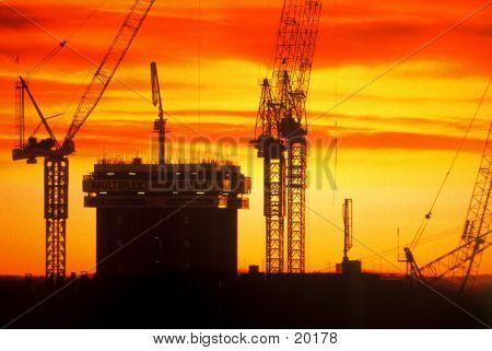 Cranes - Sunset
