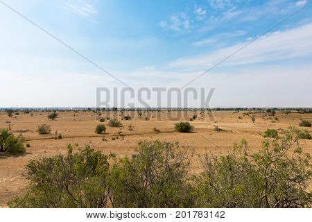 Horizontal picture of Thar Desert with local vegetation located close to Jaisalmer the Golden City in India.