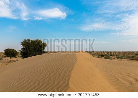 Horizontal picture of sand dunes in Thar Desert located close to Jaisalmer the Golden City in India.