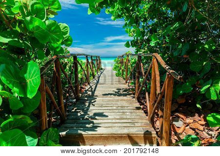 beautiful mesmerizing magic view of old wooden bridge going through tropical garden to the beach and tranquil ocean on sunny summer day