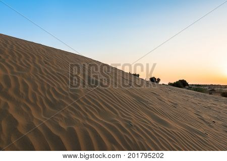 Upward picture of sand dunes during sunset time in Thar Desert located close to Jaisalmer the Golden City in India.