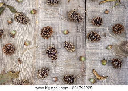 Autumn Leaves, Acorns, Pine Cones And Needles Scattered On Rustic Wood Plank Background