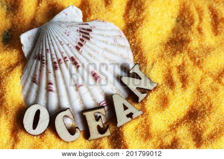 Seashells On Sand Beach, Wooden Letters, Word