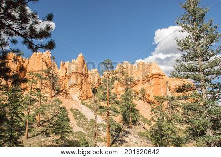 View from the Navajo Loop Trail in Bryce Canyon National Park, UT