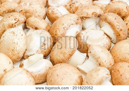Background of the fresh whole uncooked button mushrooms closeup