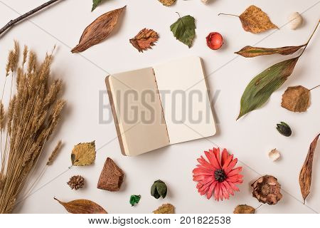 Autumn Set With Notebook In Center