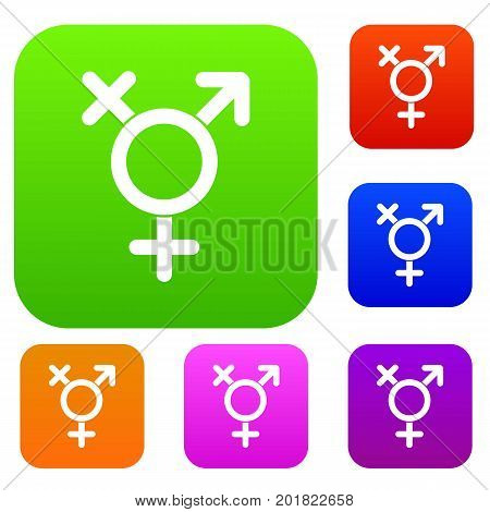 Transgender sign set icon in different colors isolated vector illustration. Premium collection