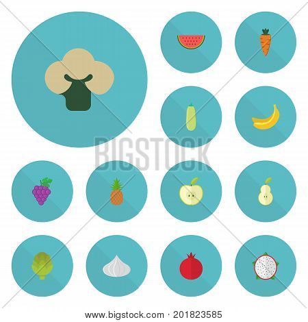 Flat Icons Cluster, Jonagold, Pumpkin And Other Vector Elements