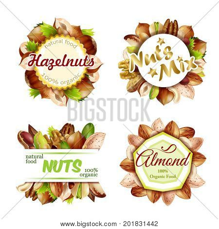 Premium colorful natural nuts labels set with walnut peanut almond hazelnut cashew pistachio brazil nuts isolated vector illustration