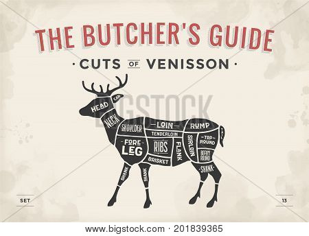 Cut of meat set. Poster Butcher diagram, scheme - Venisson. Vintage typographic hand-drawn dear silhouette for butcher shop, restaurant menu, graphic design. Meat theme. Vector Illustration