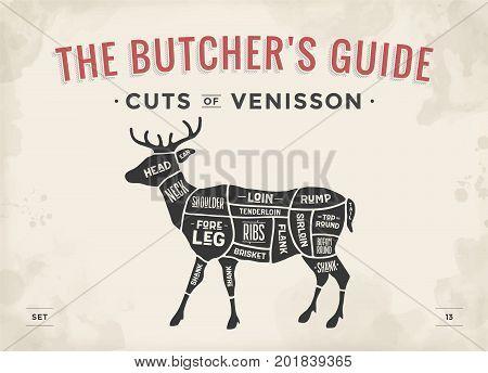 Cut of meat set. Poster Butcher diagram, scheme - Venisson. Vintage typographic hand-drawn dear silhouette for butcher shop, restaurant menu, graphic design. Meat theme. Vector Illustration