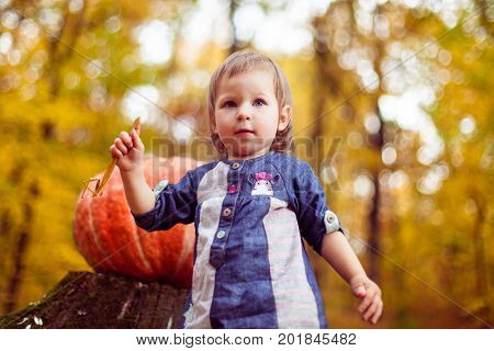 Autumn portrait of a baby on a background of yellow foliage. Beautiful girl in a blue dress, blonde with blue eyes, holding a straw. On the stump is red pumpkin - is preparing for Halloween