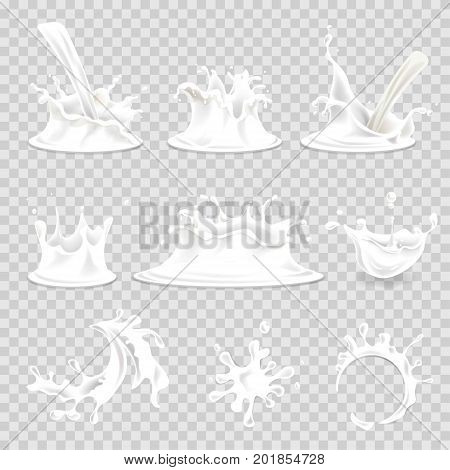 Milk splashes or pouring drops and milky cup prints. Vector 3d realistic white milk splash wave icons isolated on transparent background for dairy drink product or creamery package design elements