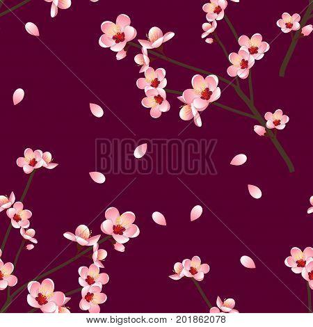 Prunus persica - Peach Flower Blossom on Red Violet Background. Vector Illustration.
