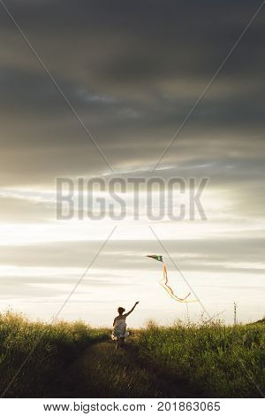 Back view of girl holding kite and running in field under sky with overcast. poster