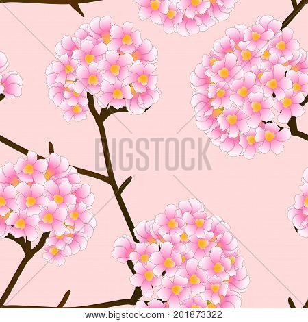 Pink Trumpet Flower on Beige Ivory Background. Vector Illustration.