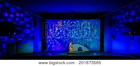 The clown on the stage of a theatre or concert hall.