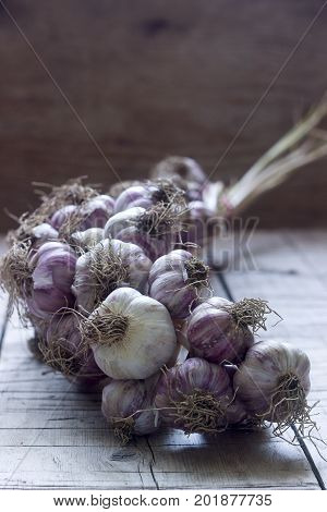 Pigtail Of Garlic On Wooden Rustic Background