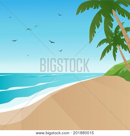 Marine background. Summer. Tropical beach.  Мector background