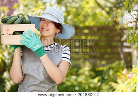 Photo of farmer woman wearing hat with cucumber box on shoulder in garden