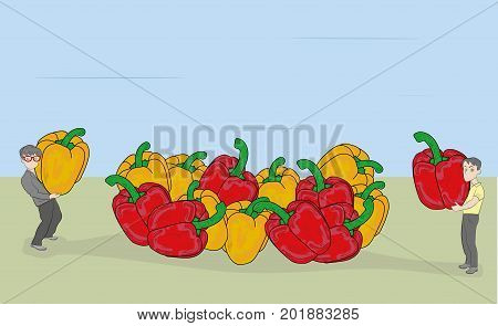 Small people harvest a sweet pepper crop. The concept of a good harvest. vector illustration.
