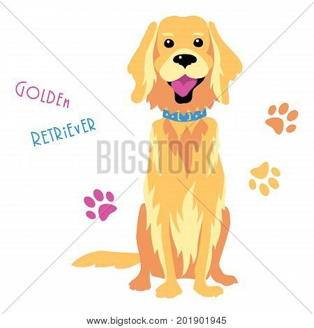 Sketch Funny dog Golden Retriever breed sitting breed hand drawing vector