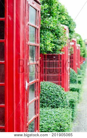 British red telephone box with old fashioned with green tree background in London United Kingdom