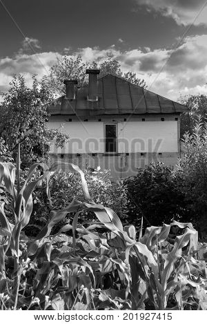 Old Private House In The Bush